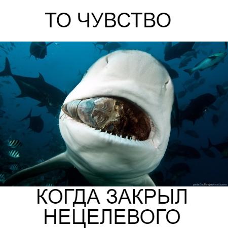 НЕЦЕЛЕВОЙ